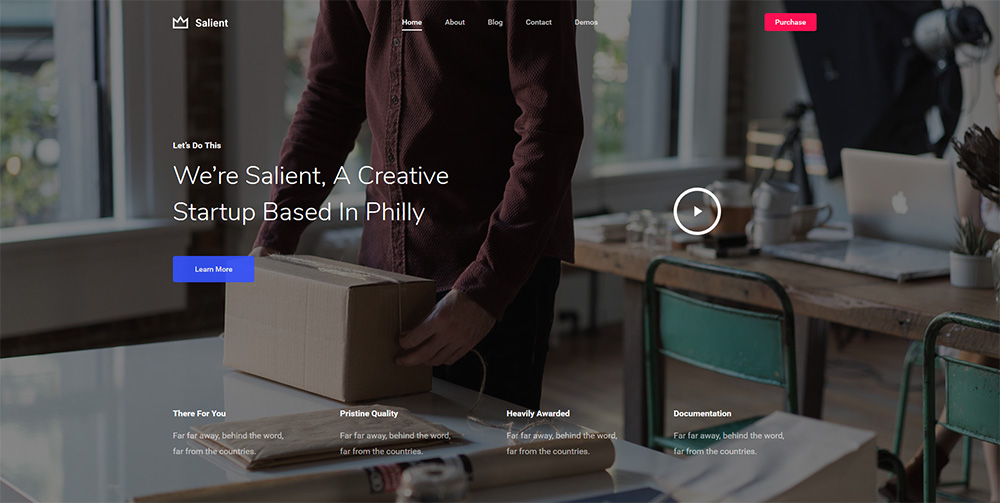 Salient Portfolio WordPress Theme