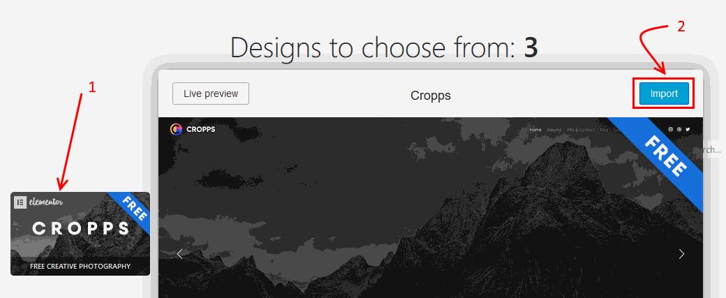 Rife Theme Design Import start for portfolio website
